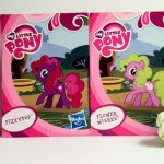 Plumsweet and Flower Wishes My Little Pony Blind Bags Series 1 Kiosk Ponies