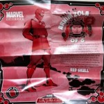 Tales of Arnim Zola Red Skull Insert from Piledriver Wrecking Crew Marvel Legends Series 2 Variant Action Figure 2012 Hasbro